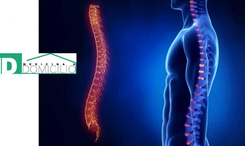 RX della colonna vertebrale: quando e perchè svolgerla