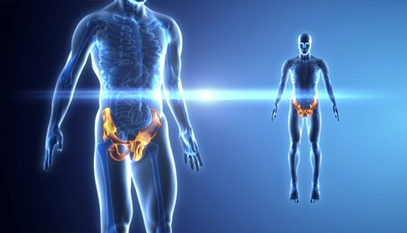 Radiografia del bacino a casa tua. Quando effettuarlo?